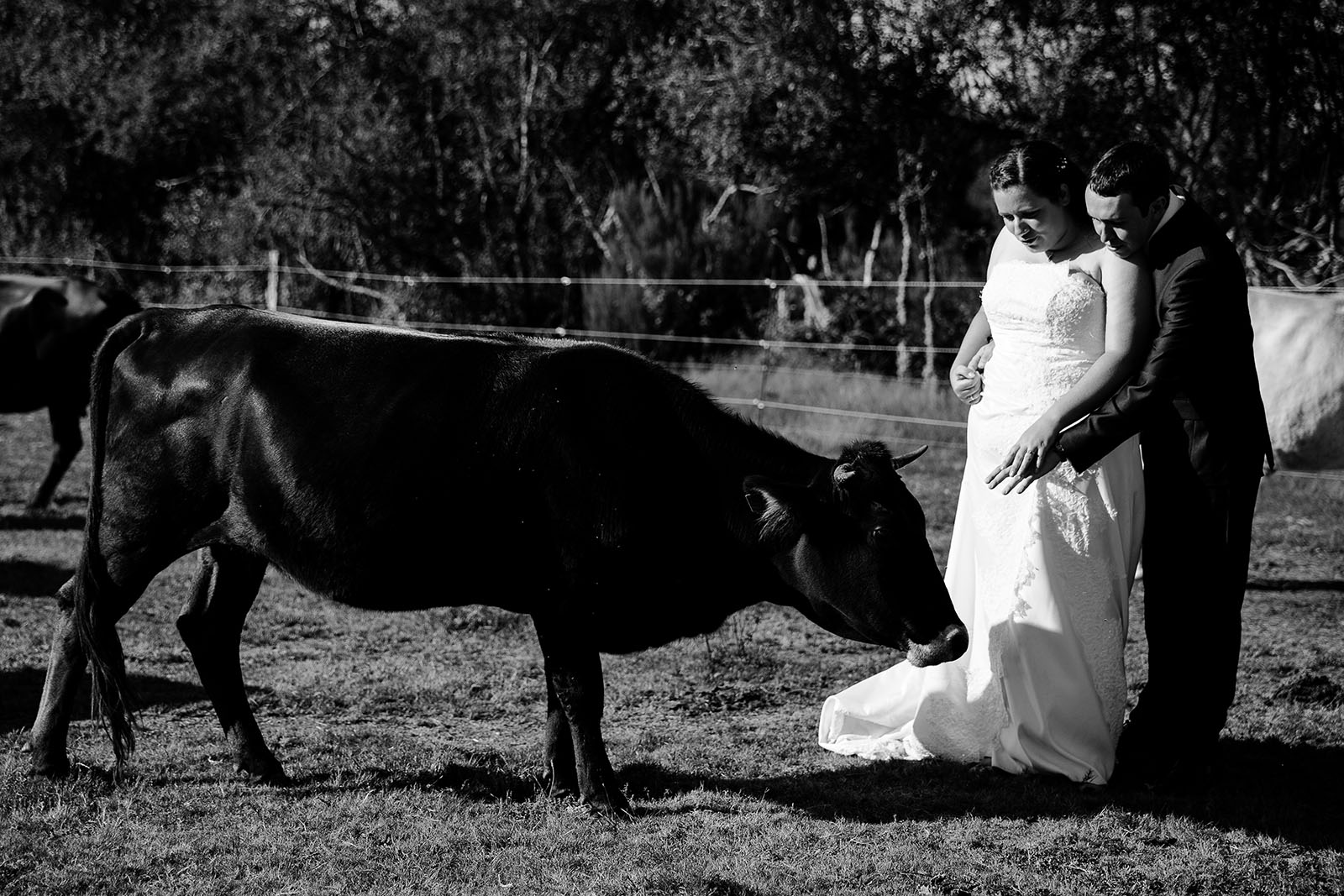 day-after-cheval-photographe-mariage-castille-alma-bordeaux-lacanau (10)