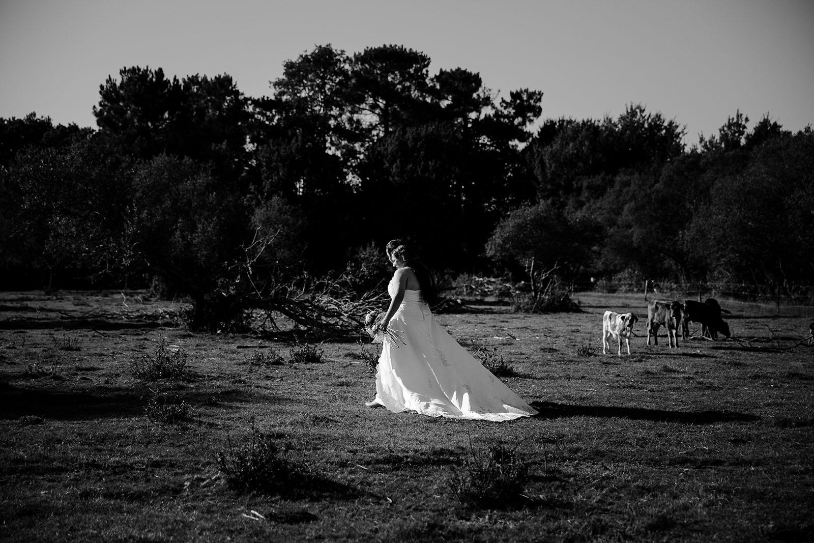 day-after-cheval-photographe-mariage-castille-alma-bordeaux-lacanau (14)