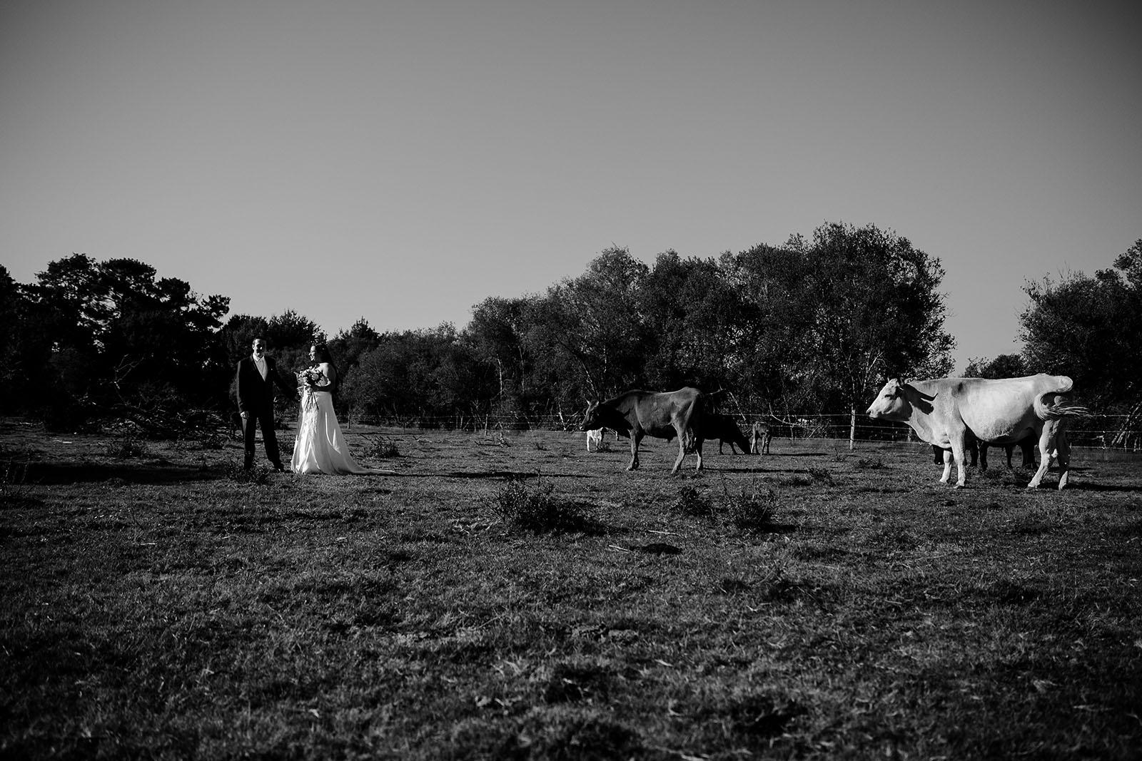 day-after-cheval-photographe-mariage-castille-alma-bordeaux-lacanau (20)