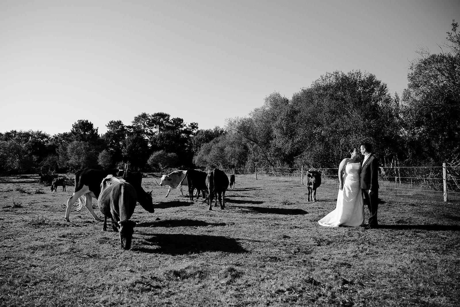 day-after-cheval-photographe-mariage-castille-alma-bordeaux-lacanau (7)