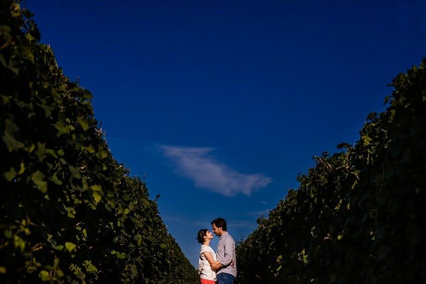 love session dans les vignes Castille ALMA photographe de mariage